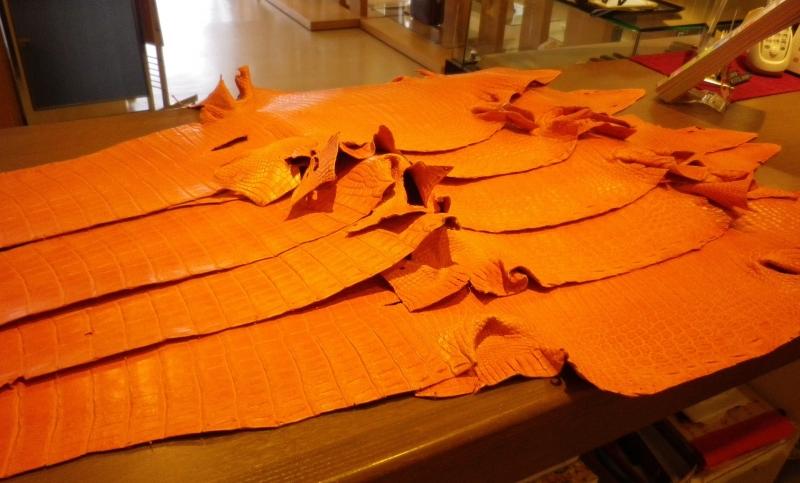 マットクロコ オレンジ② 50