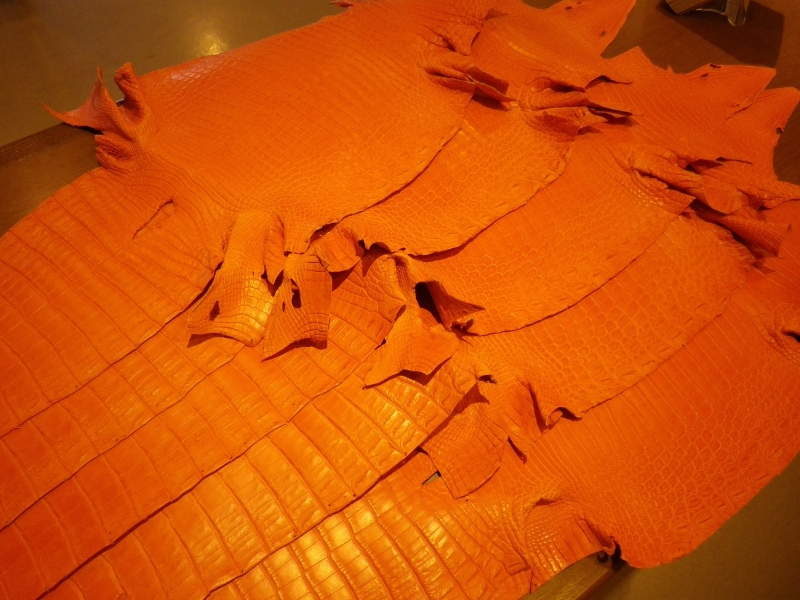 マットクロコ オレンジ③ 50