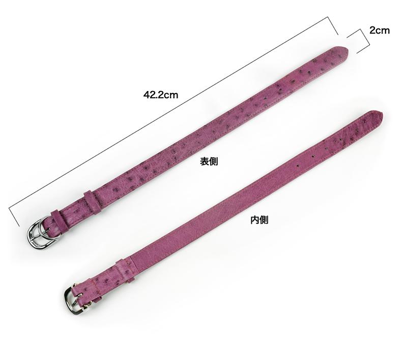 TP-ALL-2282-L